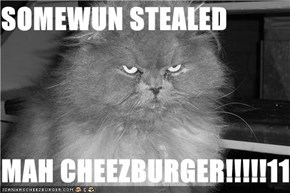 SOMEWUN STEALED   MAH CHEEZBURGER!!!!!111!!