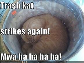 Trash kat strikes again! Mwa ha ha ha ha!