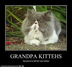 GRANDPA KITTEHS