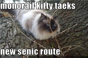 monorail kitty taeks   new senic route