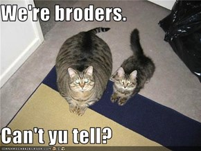 We're broders.  Can't yu tell?