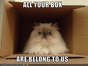 ALL YOUR BOX  ARE BELONG TO US