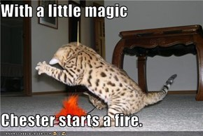With a little magic  Chester starts a fire.