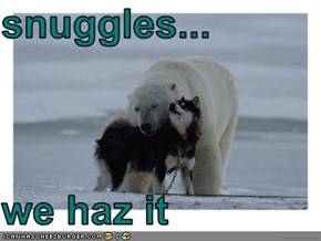 snuggles...  we haz it