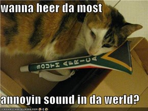 wanna heer da most  annoyin sound in da werld?