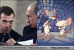 Dmitry Medvedev and Vladimir Putin Totally Looks Like Pinky and the Brain