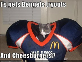 I's gets Bengels tryouts  And Cheesburgers?