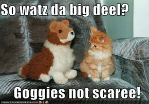 So watz da big deel?  Goggies not scaree!