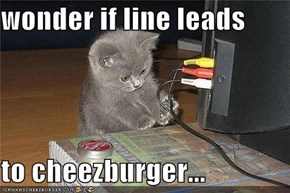 wonder if line leads  to cheezburger...