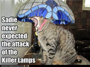 Sadie never expected the attack of the Killer Lamps