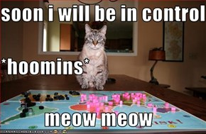 soon i will be in controll *hoomins* meow meow