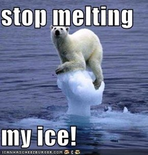 stop melting  my ice!