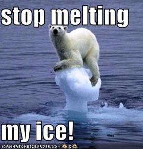 stop melting  my ice!
