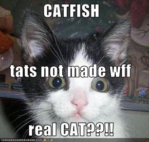 CATFISH tats not made wff real CAT??!!