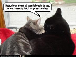 Dood, der ar plenny ub uver fishees in da see, an wat I meen by dat, iz lez go eet sumfing.