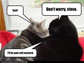 Don't worry, steve.
