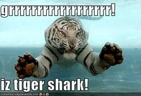 grrrrrrrrrrrrrrrrrr!  iz tiger shark!