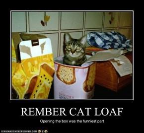 REMBER CAT LOAF