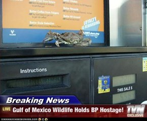 Breaking News - Gulf of Mexico Wildlife Holds BP Hostage!