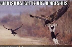 AMBISHUS KAT IZ VRY AMBISHUS