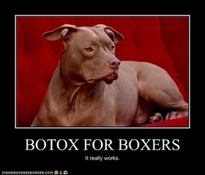 BOTOX FOR BOXERS
