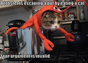 A lobster is escaping a pot by eating a cat.  Your argument is invalid.