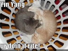Yin Yang  ur doin it rite!