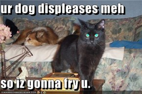 ur dog displeases meh  so iz gonna fry u.