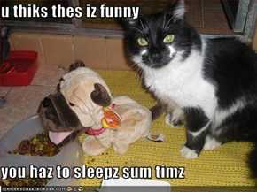 u thiks thes iz funny  you haz to sleepz sum timz