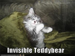 Invisible Teddybear
