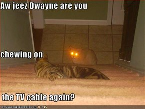 Aw jeez Dwayne are you chewing on  the TV cable again?