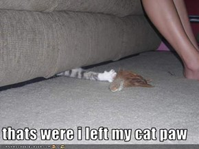 thats were i left my cat paw