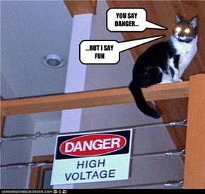 YOU SAY DANGER...