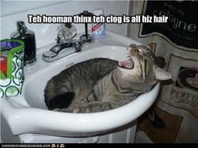 Teh hooman thinx teh clog is all hiz hair