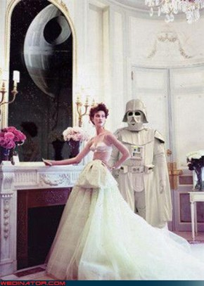 I Think Albino Vader Stole the Top of Your Wedding Dress