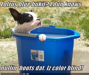 Lolrus blue bukit? I dun knows   nuffin 'bouts dat. Iz color blind!