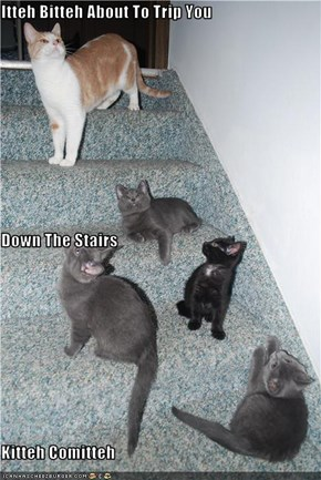 Itteh Bitteh About To Trip You Down The Stairs  Kitteh Comitteh
