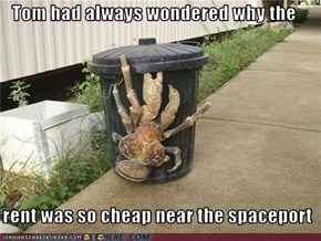 Tom had always wondered why the    rent was so cheap near the spaceport