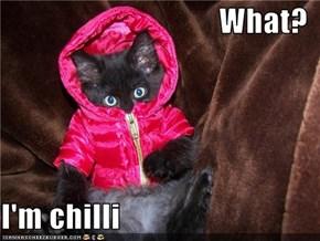 What?  I'm chilli