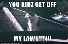 YOU KIDZ GET OFF   MY LAWN!!!1!!