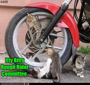 Itty Bitty Rough Rider Committee.