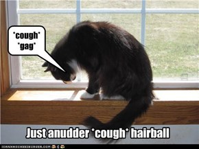 Just anudder *cough* hairball