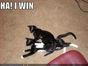 HA! I WIN