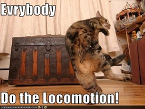 Evrybody  Do the Locomotion!