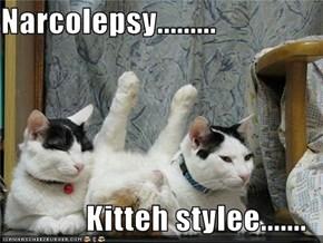 Narcolepsy.........  Kitteh stylee.......