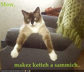 Mow,   makez ketteh a sammich..