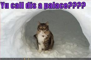 Yu call dis a palace????