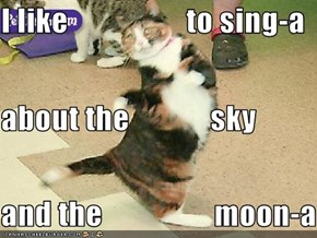 I like                   to sing-a about the             sky and the                  moon-a