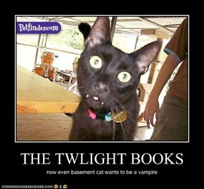 THE TWLIGHT BOOKS