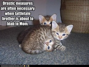 Drastic measures are often necessary when tattletale brother is about to blab to Mom.